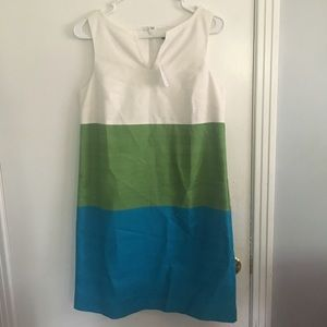 NWT! Ann Taylor Dress